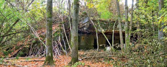 Ruiny bunkra feldmarszałka Keitla Wilczy Szaniec