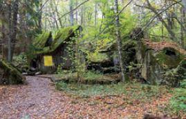 Ruiny bunkra obrony przeciwlotniczej Wilczy Szaniec